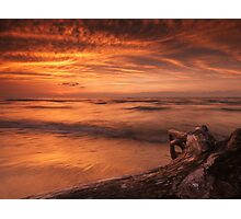 Beautiful atmospheric sunset scenery of driftwood on lake shore art photo print Photographic Print