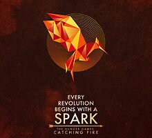 Catching Fire - Every revolution begins with a Spark by spacegirl19