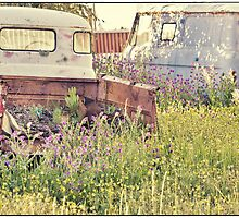 Wrecks and Weeds #1 by Paul Amyes