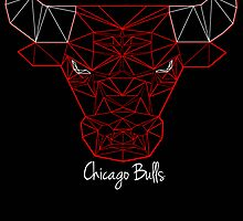 Chicago Bulls by hannal