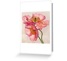 Like Light through Silk Greeting Card