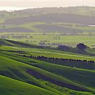Rolling green hills in the Springtime by S T
