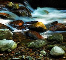 River in the Black Forest by Imi Koetz