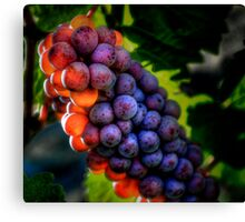 Just Another Bunch ~ Grapes ~ Canvas Print