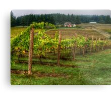 House On The Hill ~ Grape Vineyard ~ Metal Print