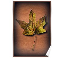 ❦ ❧ FALLEN LEAF A SIGN OF FALL ❦ ❧ Poster