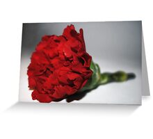 romantic flower Greeting Card