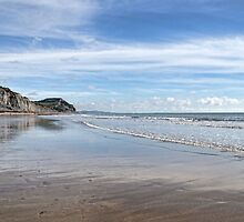 Charmouth Beach, Dorset UK by lynn carter