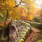 Foleys Bridge by GaryMcParland