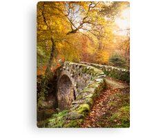 Foleys Bridge Canvas Print