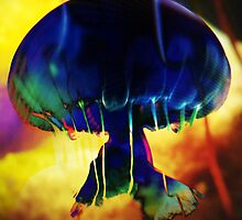 4481 Jellyfish by AnkhaDesh
