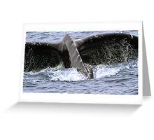 Dive ! Greeting Card