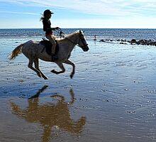 Enjoying The Ride by lynn carter