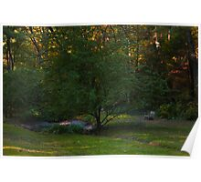 Tranquility By A Pond Poster