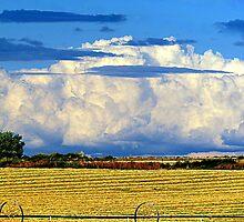 God's Country...Idaho by trueblvr