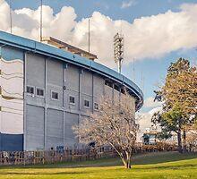 Centenario Stadium Facade, Montevideo - Uruguay by DFLC Prints