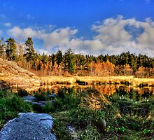 Autumnal Colors by Larry Trupp