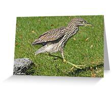 Heron hopscotch Greeting Card