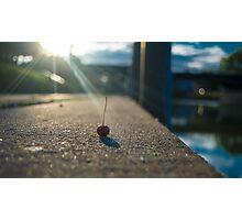 Cherry burst! Photographic Print