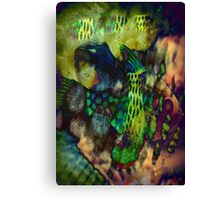 4550 Psychedelic Fish Canvas Print