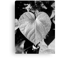 The Love Of Gardening Canvas Print