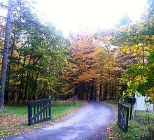 Autumn Gate by ericalipper