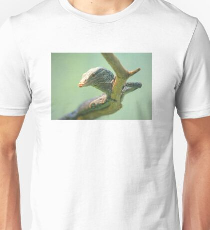 Lizard Close Up Unisex T-Shirt
