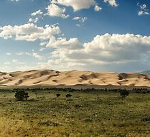 Great Sand Dunes Panorama - Great Sand Dunes National Park, Colorado by Jason Heritage