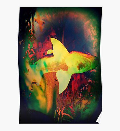 4599 Shark Poster