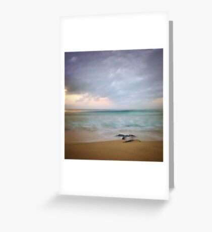Sea Lace Greeting Card