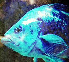 4647 Fish by AnkhaDesh