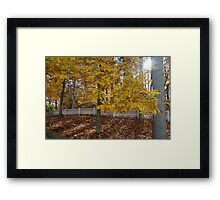 White Picket Fence in Autumn Framed Print