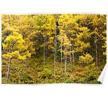 Hillside Fall - Japan Poster