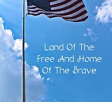 Land Of The Free by Joann Copeland-Paul