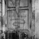Door within a door - Bangkok, Thailand by Norman Repacholi