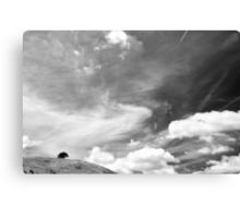 Standing among clouds  Canvas Print