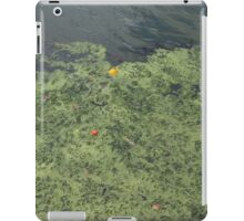 orange and bobber iPad Case/Skin