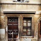 Antique Door, Rome by Roz McQuillan