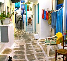 Life on Mykonos by Barbara  Brown