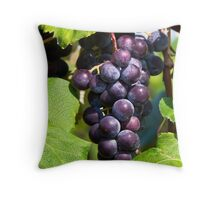 Cluster of Purple Grapes on the Vine Throw Pillow