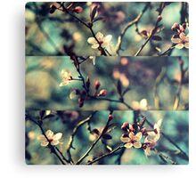 Vintage Blossoms - Triptych Metal Print