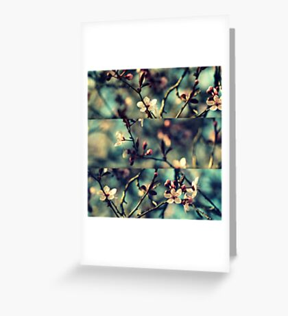 Vintage Blossoms - Triptych Greeting Card