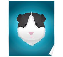 Black and White Guinea Pig Poster