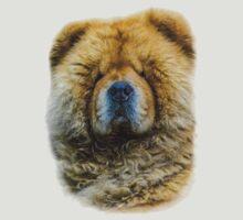 Chow portrait by TOM KLAUSZ