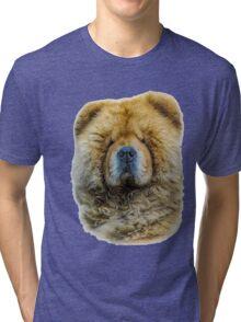 Chow portrait Tri-blend T-Shirt