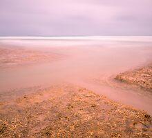 North West Coast by Imi Koetz