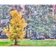Patriotic Autumn Photographic Print