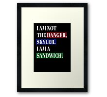 BREAKING BAD SANDWICH Framed Print