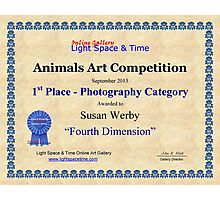 Animals- 1st Place Photography Photographic Print