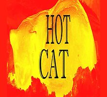 HOT CAT by pjmurphy